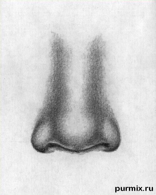 How to draw a human nose with a simple pencil step by step