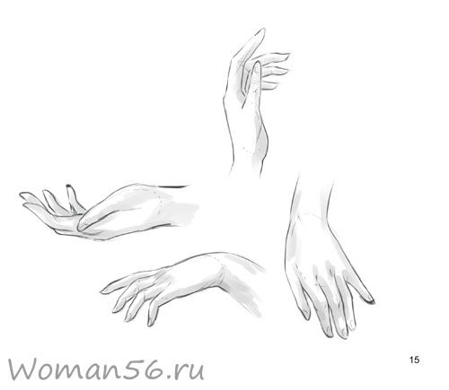 How to draw female hands with a pencil step by step