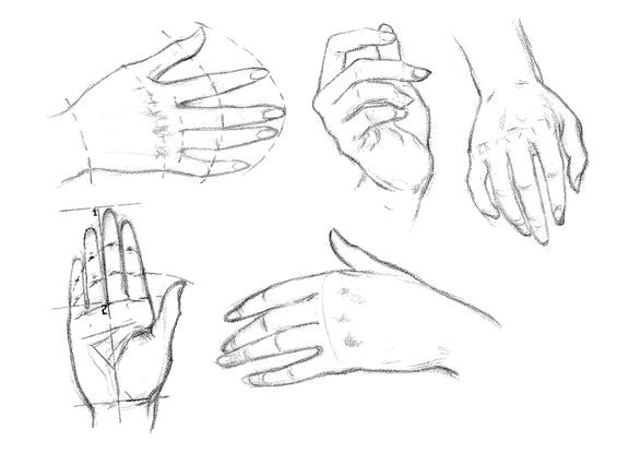 How to draw Female hands a pencil