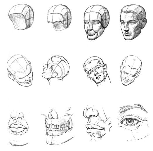 Creation of drawing of the head from parts