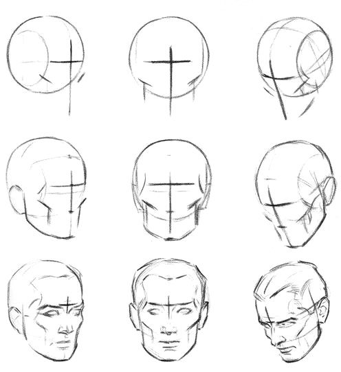 Cross and the average line in drawing of the head