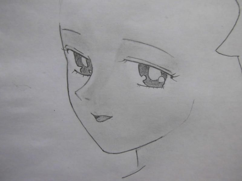 We draw step by step the girl cat sitting an anime 3