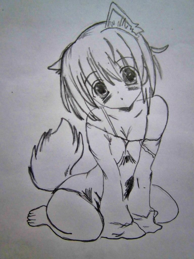 We draw step by step the girl cat sitting an anime