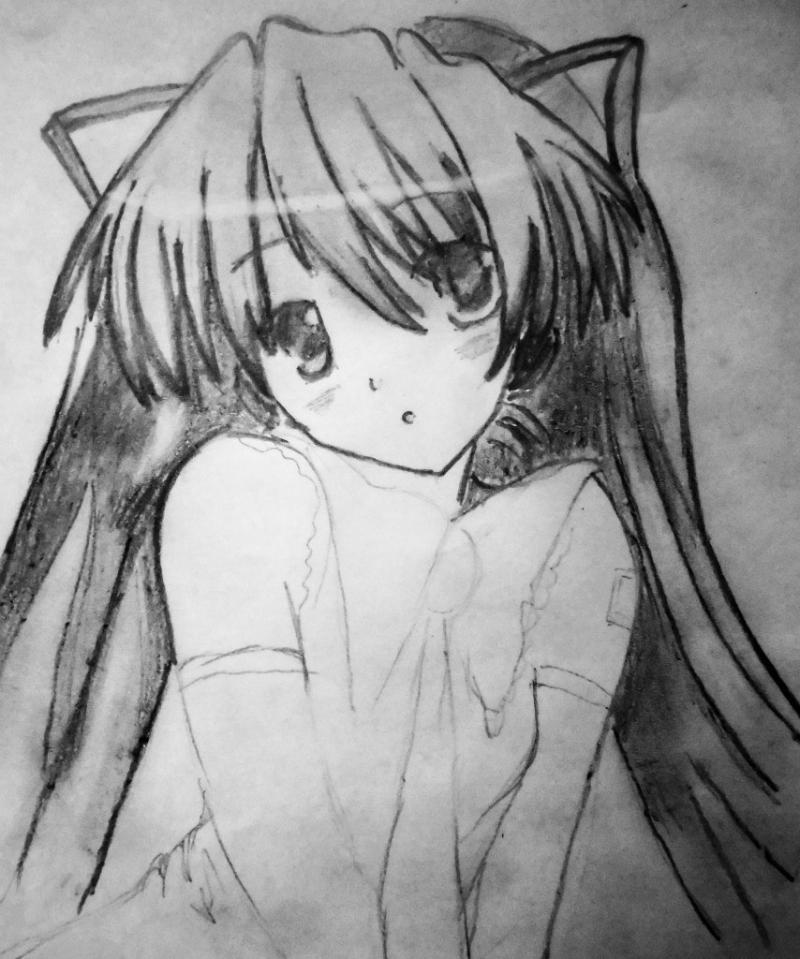 How to draw the girl lying an anime a cat with a pencil 5