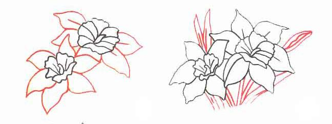 How to draw a flower a crocus with a pencil step by step 2