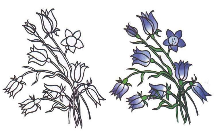 As it is simple to draw flowers hand bells with a pencil step by step