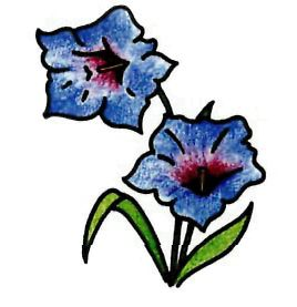 How to draw a flower the Gentian with a pencil step by step