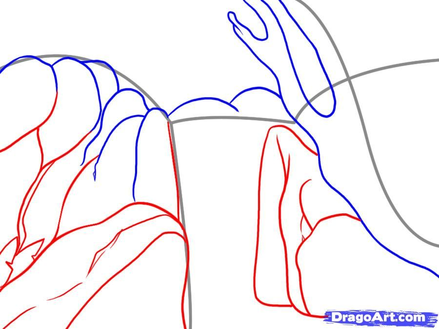 How to draw the Oak step by step 4