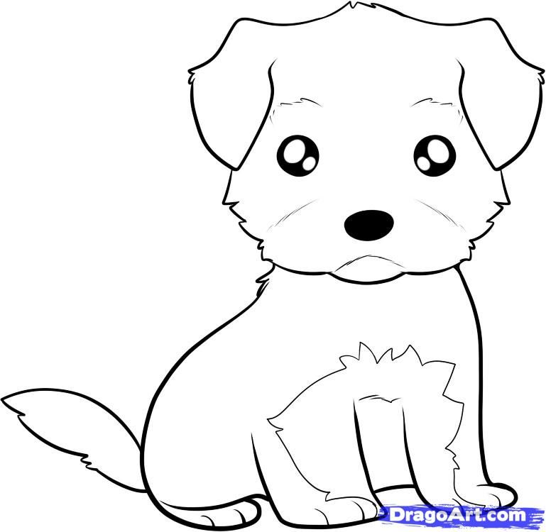How to draw a puppy of a terrier to the child with a pencil step by step