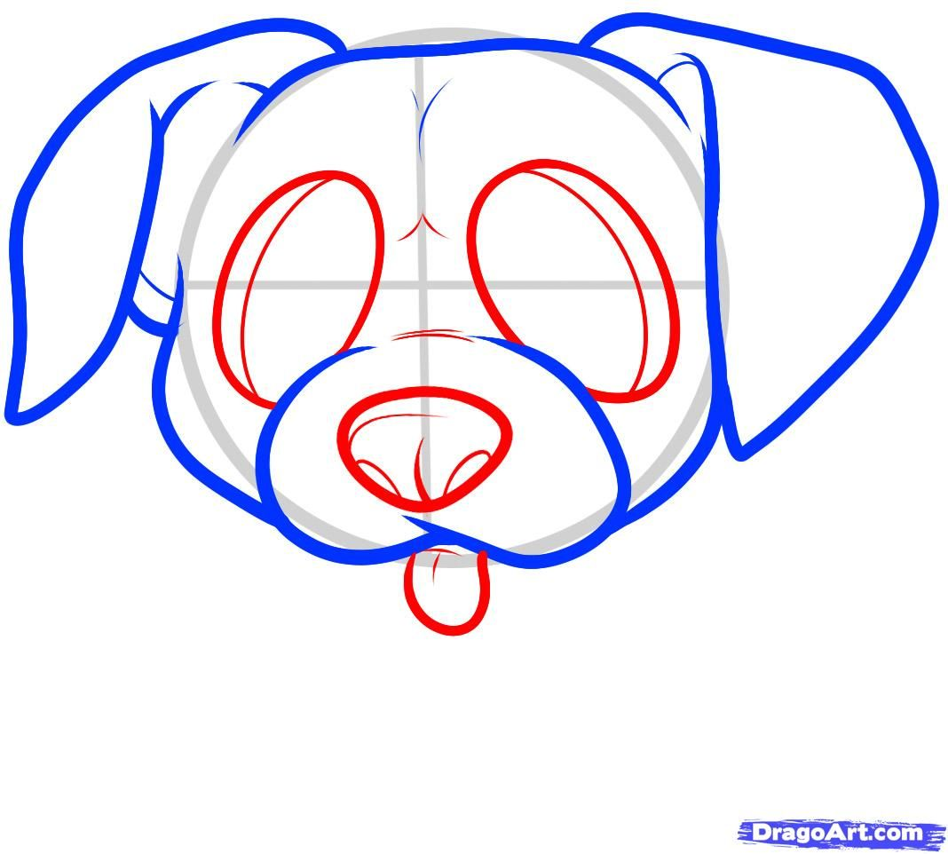 How to draw a puppy of a German shepherd to the child with a pencil step by step 5