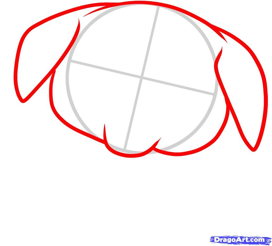 How to draw a pig to the child with a pencil step by step 3