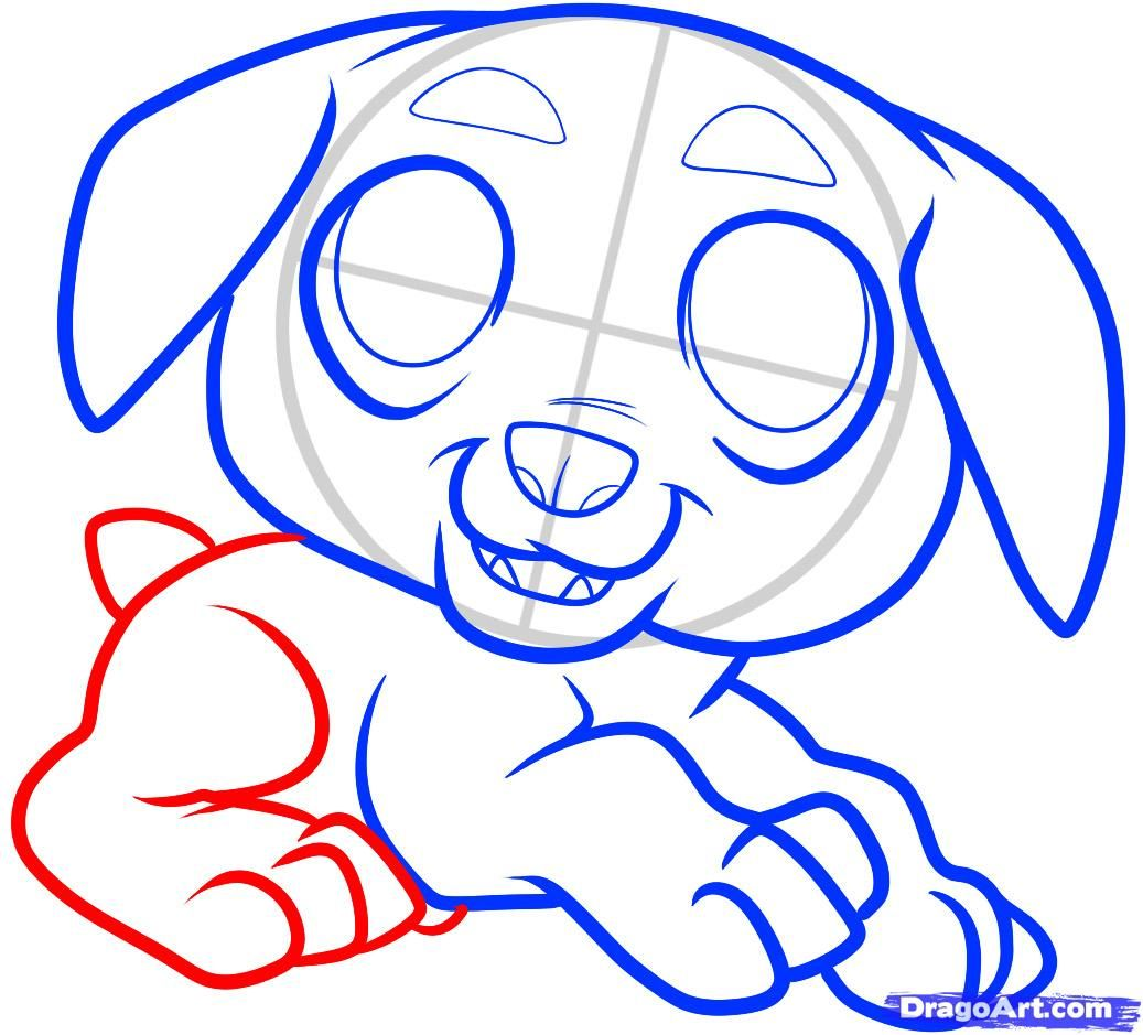 How to draw a pig to the child with a pencil step by step 8