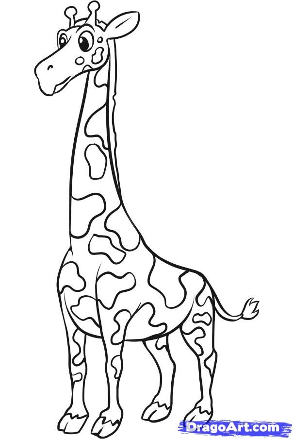 How to draw a giraffe to the child with a pencil step by step