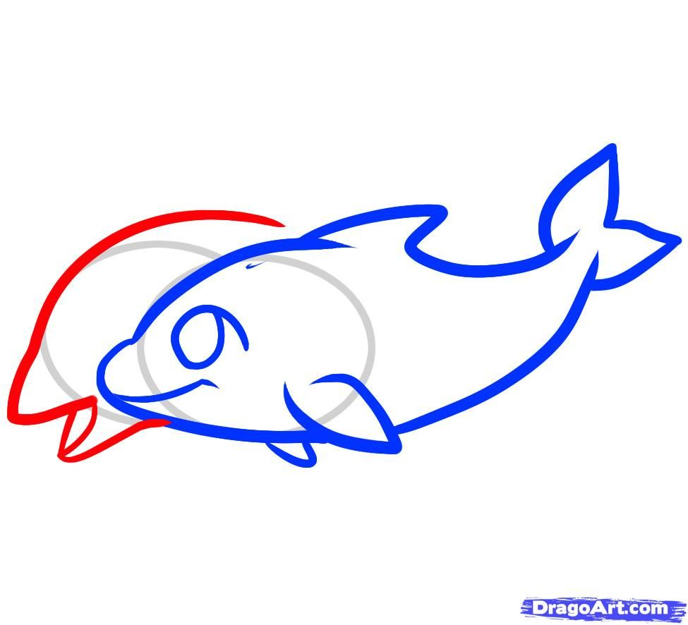 how to draw dolphins for children
