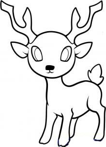 Nous dessinons le cerf progressivement