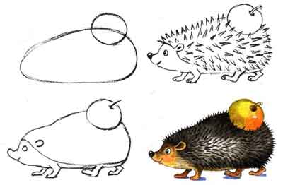 How to draw a hedgehog.