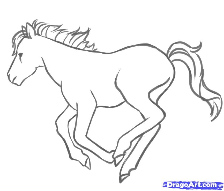 How to draw a pony step by step
