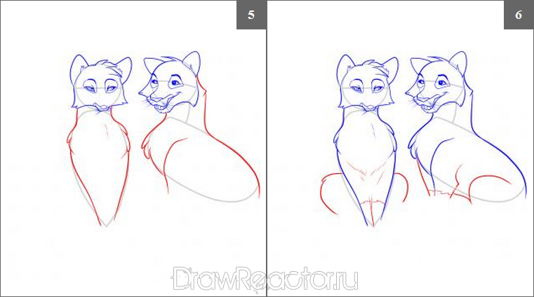 How to draw the Tiger cub step by step 3