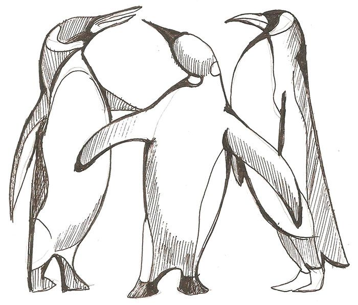 How to draw three penguins step by step