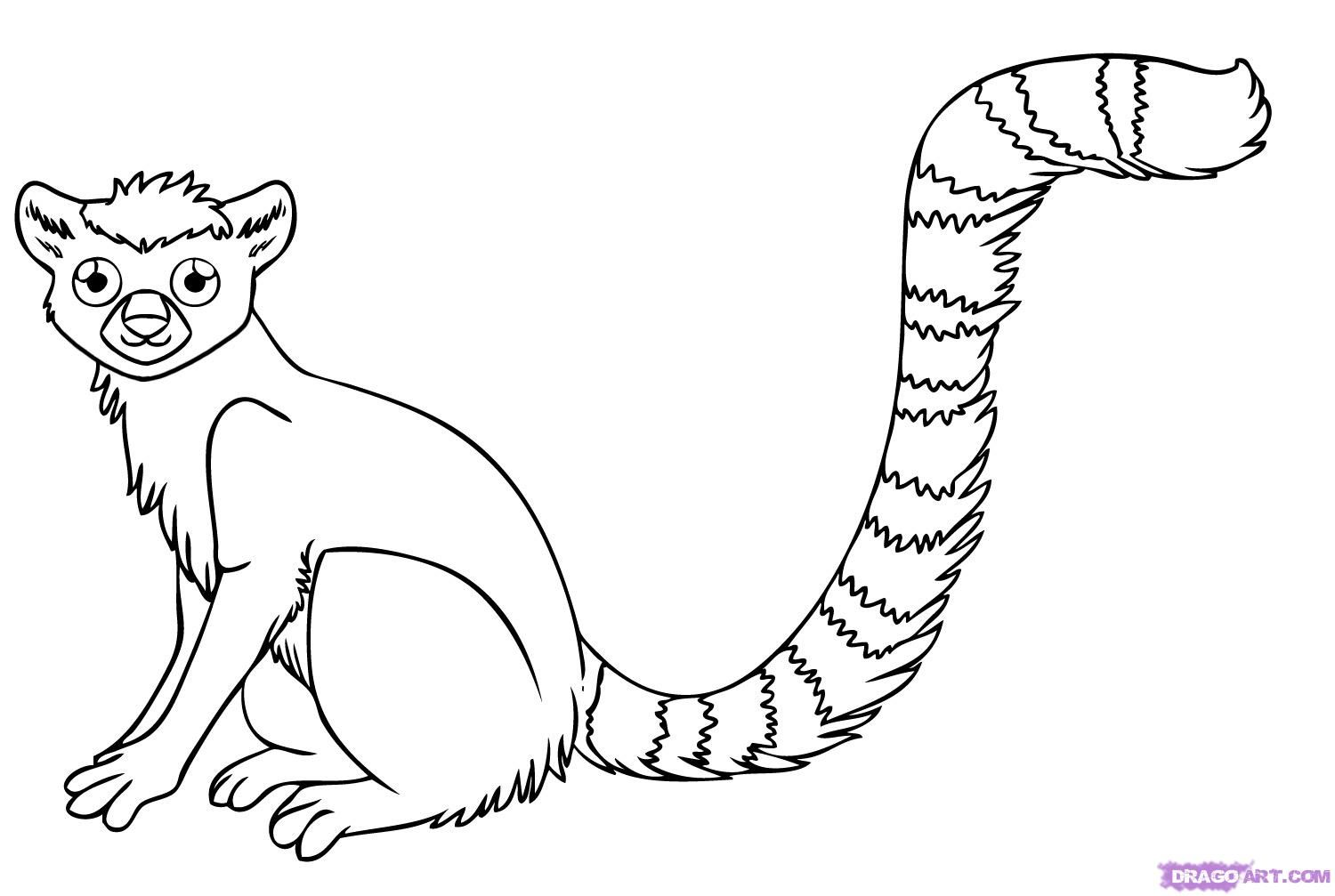 How to draw a lemur step by step