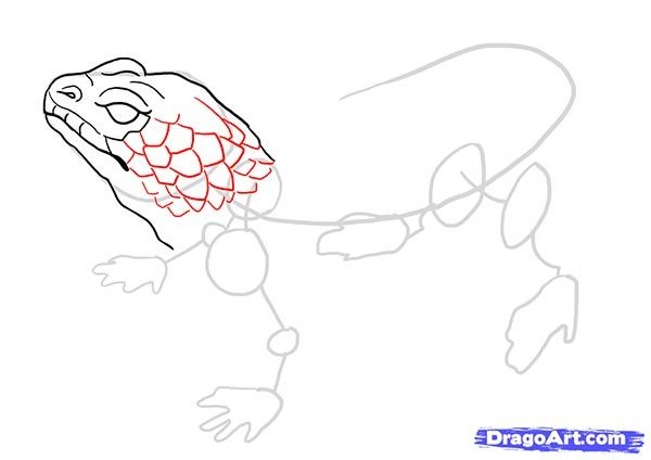 How to draw the Sword fish with a pencil step by step 9