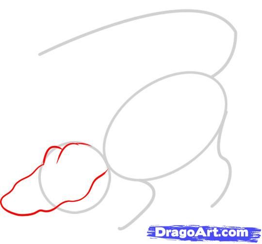 How to draw the Spider with a pencil step by step 3