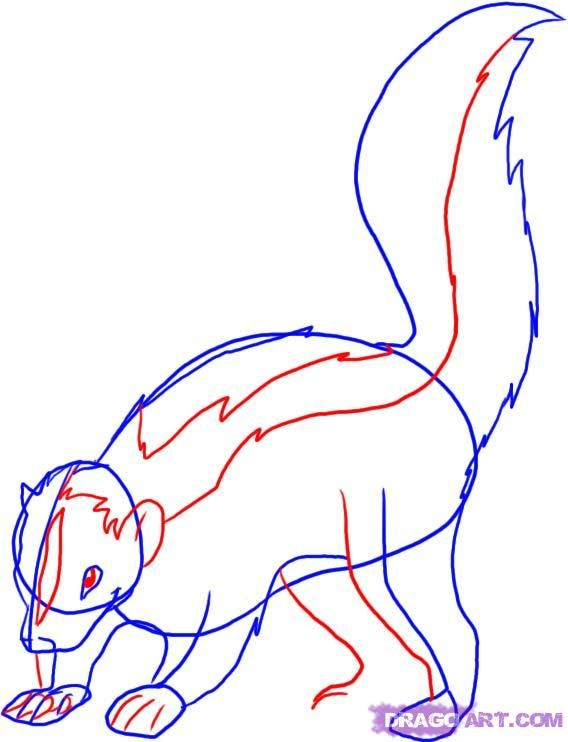 How to draw a polar Fox with a pencil step by step 4