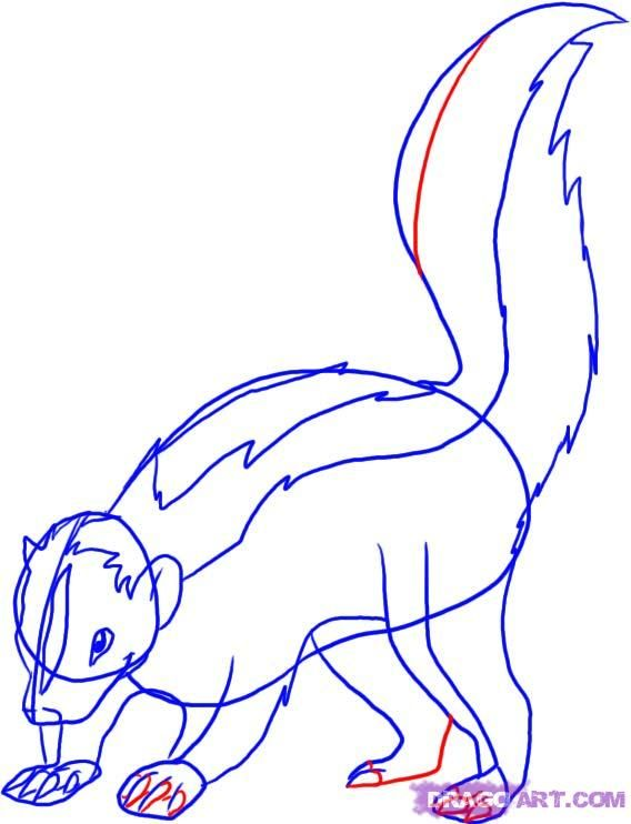 How to draw a polar Fox with a pencil step by step 5