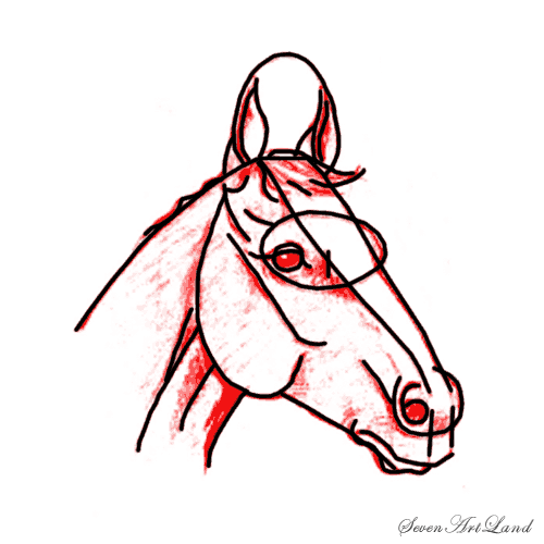 How to draw the Horse with a pencil step by step 6