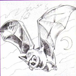 How to draw the Bat with a pencil step by step