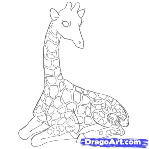 How to draw the lying giraffe with a pencil step by step