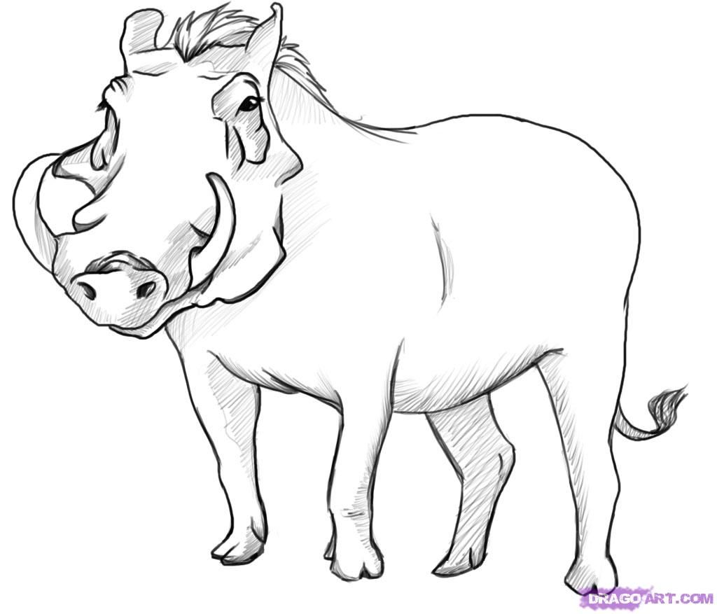 How to draw a wild Pig with a pencil step by step