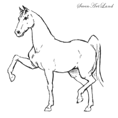How to draw the trained Horse with a pencil step by step