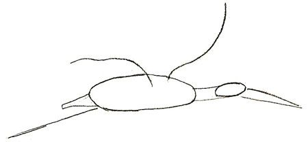 As it is simple to draw a field mouse with a pencil step by step 2