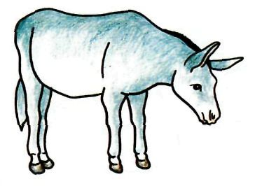 As it is simple to draw a donkey with a pencil step by step