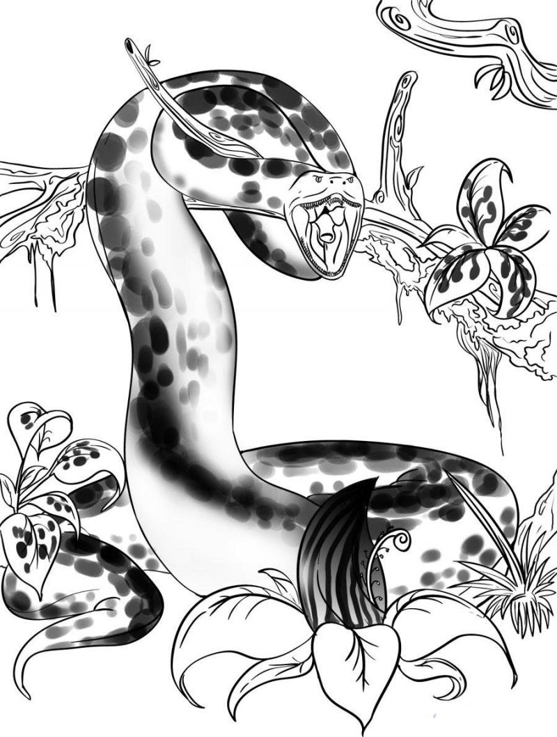 How to draw an anaconda on paper with a pencil step by step