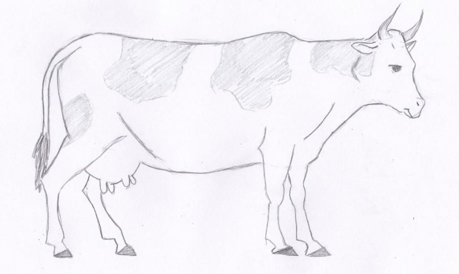 As it is simple to draw a cow on paper with a pencil