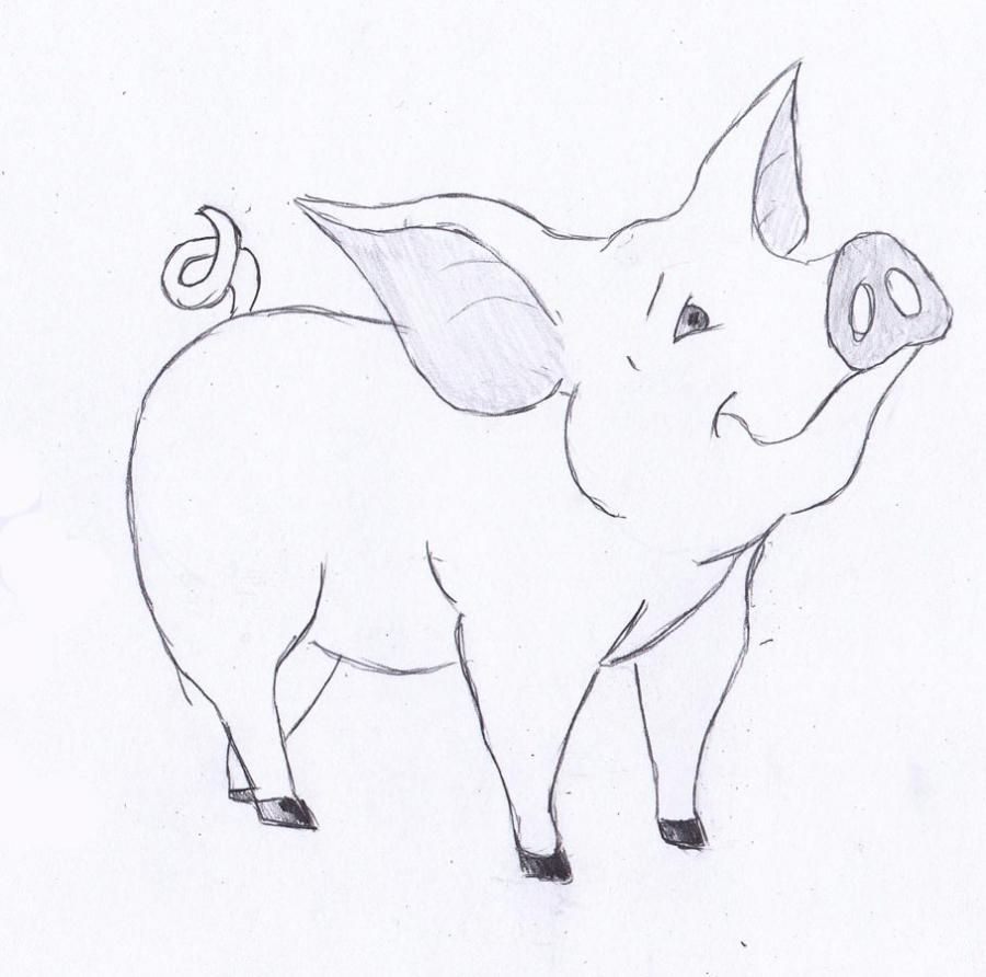 How to draw a little pig with a pencil step by step