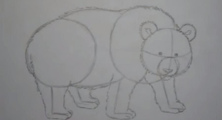 We learn to draw a chimpanzee a simple pencil step by step 3