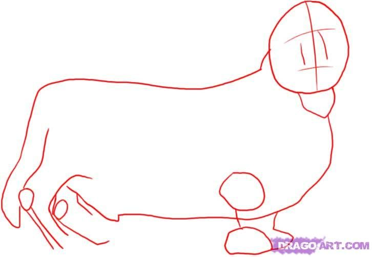 How to draw a dalmatian step by step 2