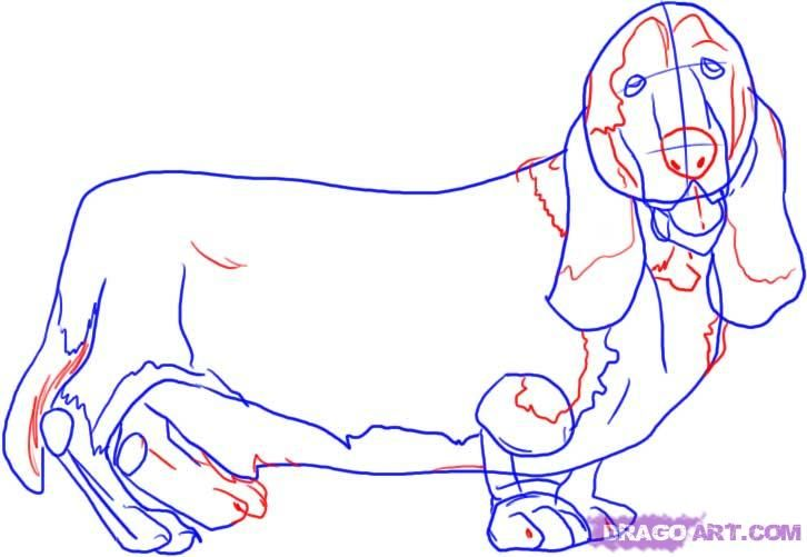 How to draw a dalmatian step by step 4