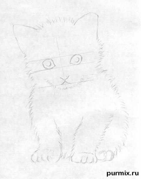 How to draw a fluffy kitten with colored pencils 3
