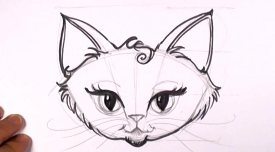How to draw a kitten on a tree with a pencil step by step 12