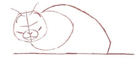 How to draw a cat in the movement with a pencil step by step 3