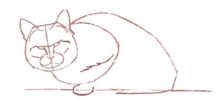 How to draw a cat in the movement with a pencil step by step 4