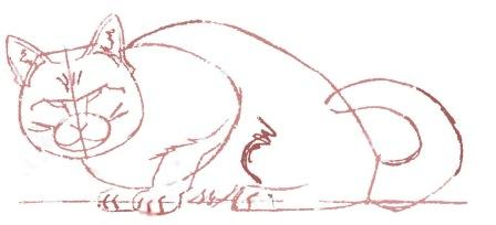 How to draw a cat in the movement with a pencil step by step 6