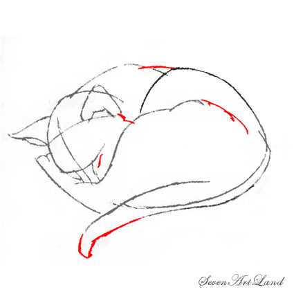 How to draw the realistic head of a cat step by step 7