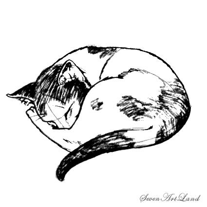 How to draw the Sleeping cat with a pencil step by step