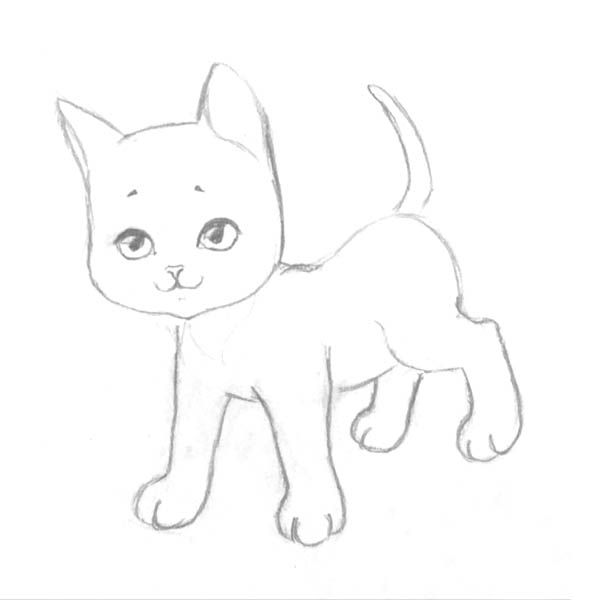 How to draw the Lying Kitten with a pencil step by step 4