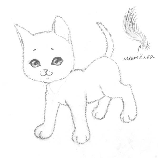How to draw the Lying Kitten with a pencil step by step 6